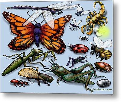 Bugs Metal Print by Kevin Middleton