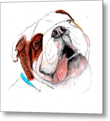 Bully For You Metal Print by Barbara Giordano