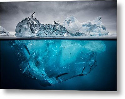 Buoyancy Metal Print by Justin Hofman