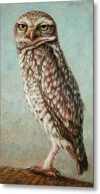 Burrowing Owl Metal Print by James W Johnson