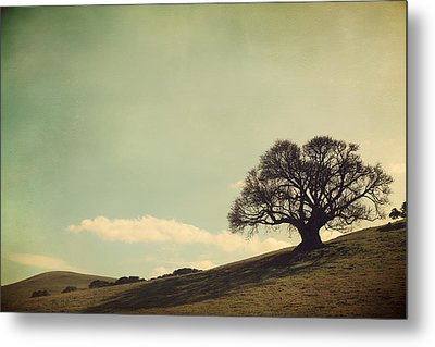 But I Still Need You Metal Print by Laurie Search