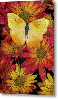 Butterfly Detail Metal Print by JQ Licensing
