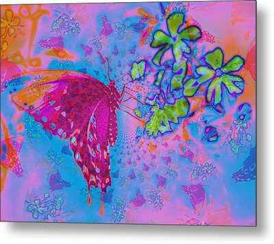 Butterfly Dreams Metal Print by Rose  Hill