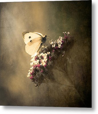 Butterfly Spirit #01 Metal Print by Loriental Photography