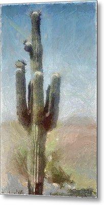Cactus Metal Print by Jeff Kolker