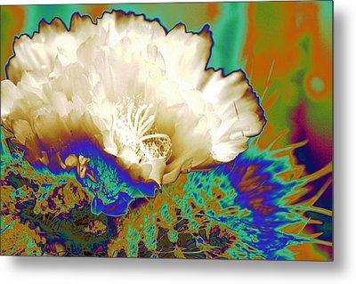 Cactus Moon Flower Metal Print by  Andrea Lazar