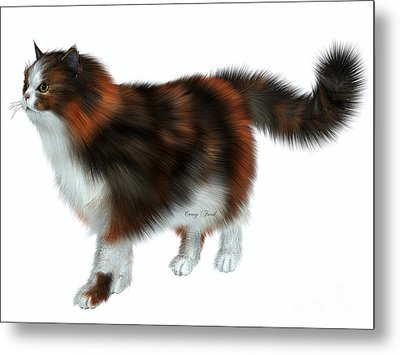 Calico Cat Metal Print by Corey Ford