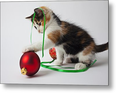 Calico Kitten And Christmas Ornaments Metal Print by Garry Gay