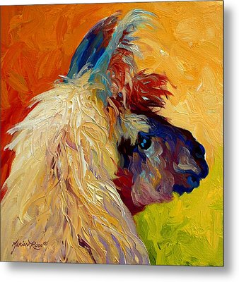 Calico Llama Metal Print by Marion Rose