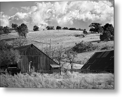 California Farmland - Black And White Metal Print by Peter Tellone
