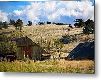California Farmland Metal Print by Peter Tellone