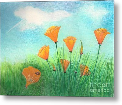 California Poppies Metal Print by Janet Hinshaw
