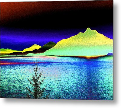 Call Of The Coast Metal Print by Will Borden