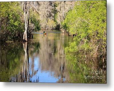 Canoeing On The Hillsborough River Metal Print by Carol Groenen