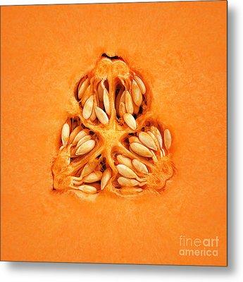 Cantaloupe Melon Inside Metal Print by Johan Swanepoel