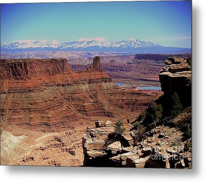 Canyonlands 5 Metal Print by Marty Koch