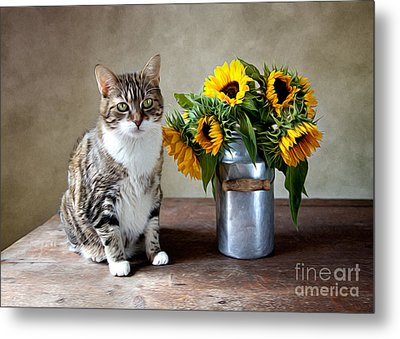 Cat And Sunflowers Metal Print by Nailia Schwarz