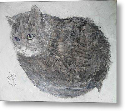 Cat Named Shrimp Metal Print by AJ Brown