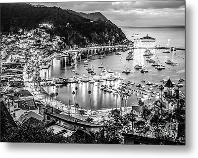 Catalina Island Avalon Bay Black And White Picture Metal Print by Paul Velgos