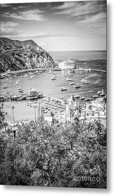 Catalina Island Vertical Black And White Photo Metal Print by Paul Velgos