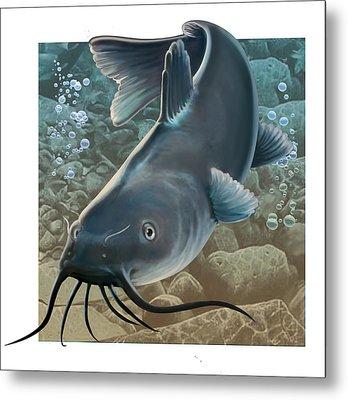 Catfish Metal Print by Valer Ian