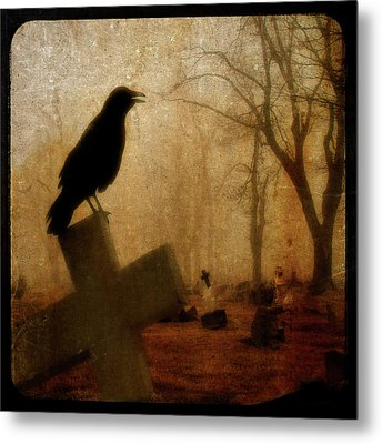 Cawing Night Crow Metal Print by Gothicrow Images