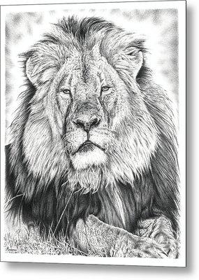 Cecil The Lion  Metal Print by Remrov Vormer