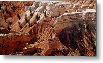 Cedar Breaks 5 Metal Print by Marty Koch