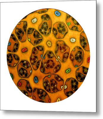 Cell Network Metal Print by Nancy Mueller