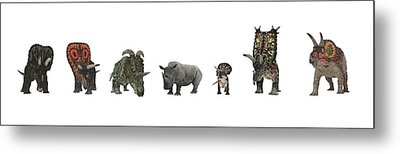 Cerapod Dinosaurs Compared To A Rhino Metal Print by Walter Myers