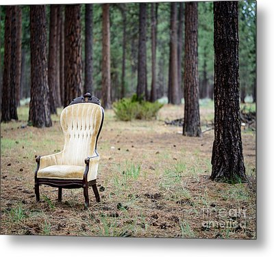Chair In The Forest Metal Print by Terry Garvin