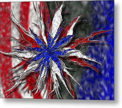 Chaotic Star Project - Take 3 Metal Print by Scott Hovind
