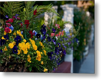 Charleston Flower Boxes Metal Print by Melissa Wyatt