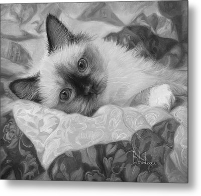 Charming - Black And White Metal Print by Lucie Bilodeau