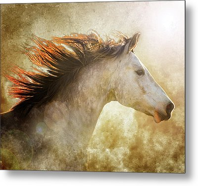 Chase The Light Metal Print by Ron McGinnis