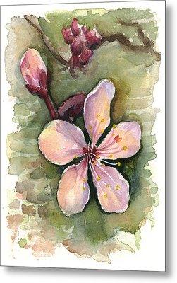 Cherry Blossom Watercolor Metal Print by Olga Shvartsur