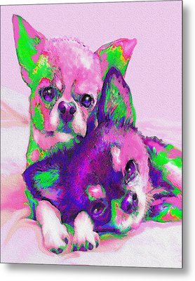 Chihuahua Love Metal Print by Jane Schnetlage