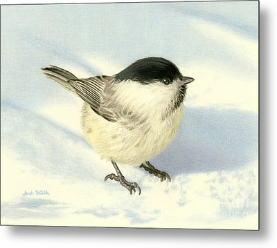 Chilly Chickadee Metal Print by Sarah Batalka