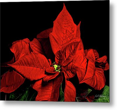 Christmas Fire Metal Print by Christopher Holmes