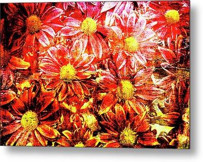 Chrysanthemums In Water 2 Metal Print by Skip Nall