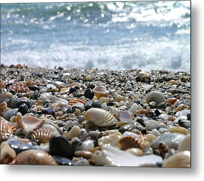 Close Up From A Beach Metal Print by Romeo Reidl