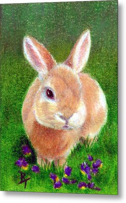 Clover Aceo Metal Print by Brenda Thour