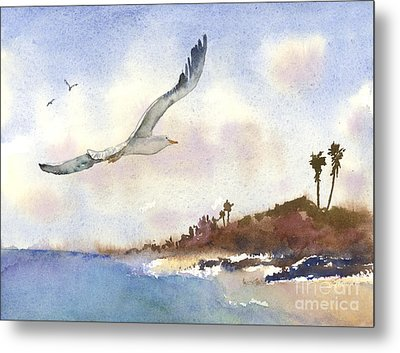 Coastal Flight Metal Print by Amy Kirkpatrick