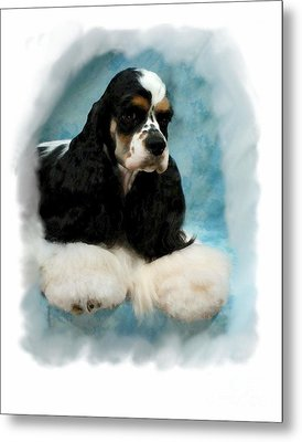 Cocker Spaniel 814 Metal Print by Larry Matthews