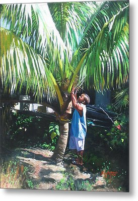 Coconut Shade Metal Print by Colin Bootman