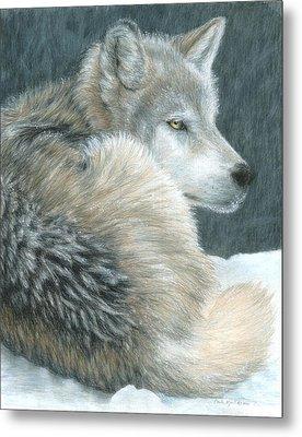 Cold Evening Metal Print by Carla Kurt