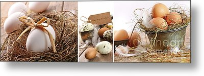 Collage Of Assorted Egg Images  Metal Print by Sandra Cunningham