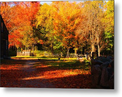 Colonial Fall Colors Metal Print by Jeff Folger