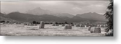 Colorado Farming Panorama View In Black And White Metal Print by James BO  Insogna