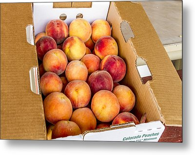Colorado Peaches Ready For Market Metal Print by Teri Virbickis